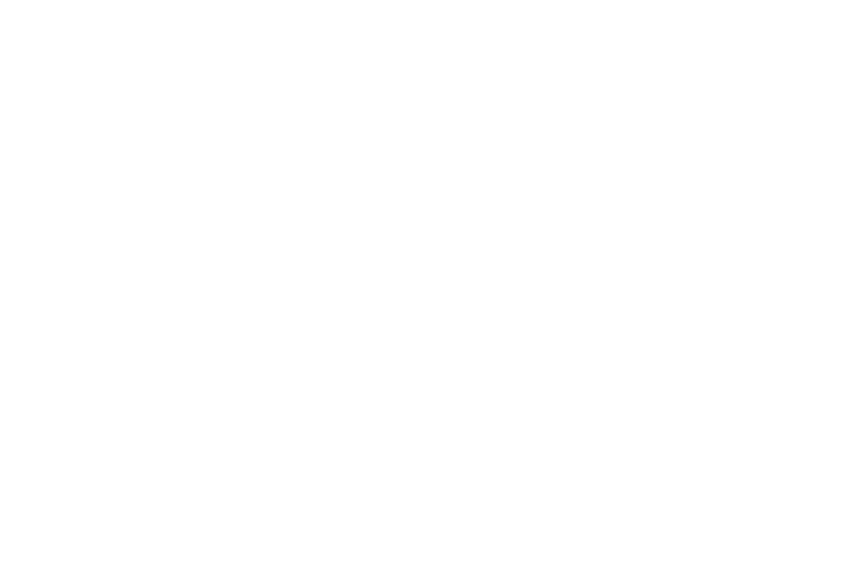 OFFICIAL SELECTION – Vancouver Independent Film Festival – 2021 (1)