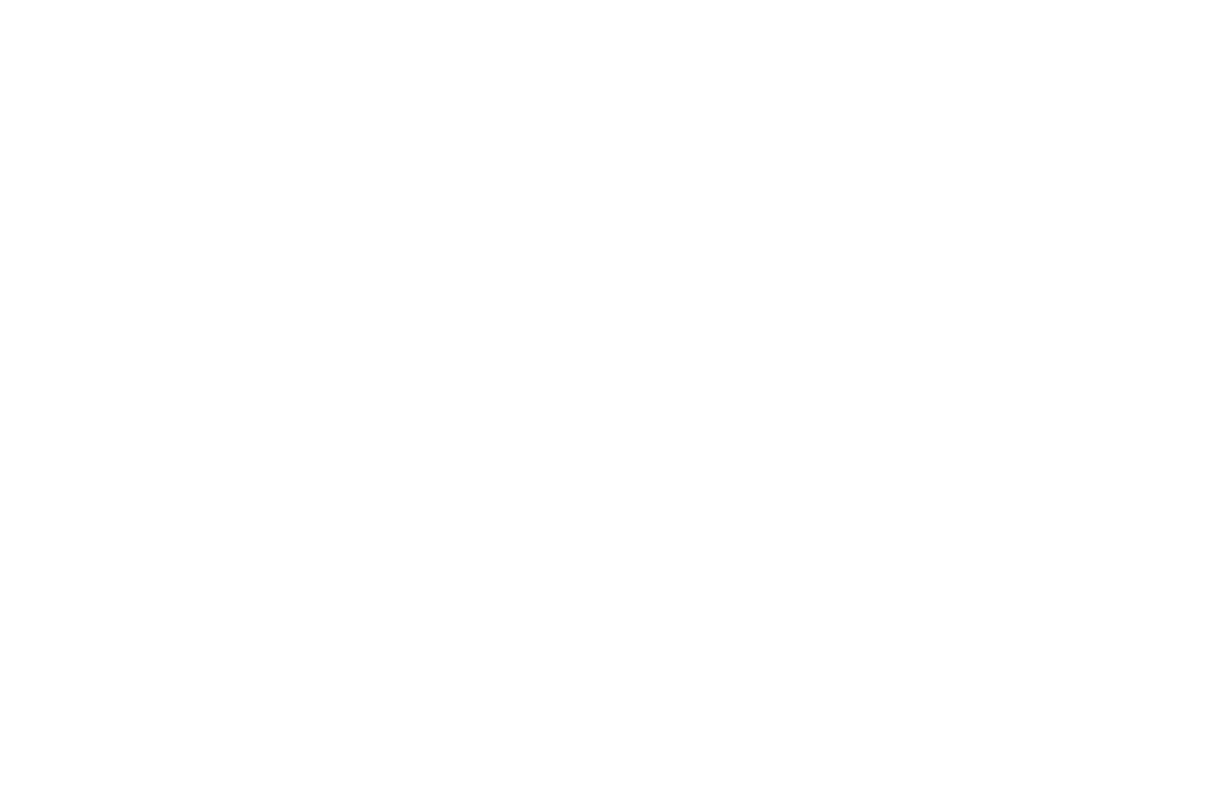 OFFICIALSELECTION-ChicagoIndieFilmAwards-2021 (white)